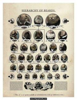 Beard Types A