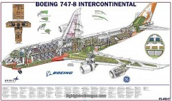 Boeing 747-8 Cutaway – Photo Prints