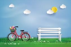 bicycle garden vector