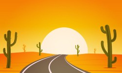 Cactus highways