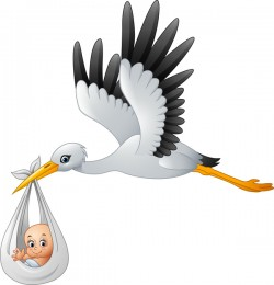 Cartoon stork with cute baby vectors 03