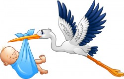 Cartoon stork with cute baby vectors 04
