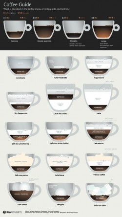 Coffee Guide [Infographic]