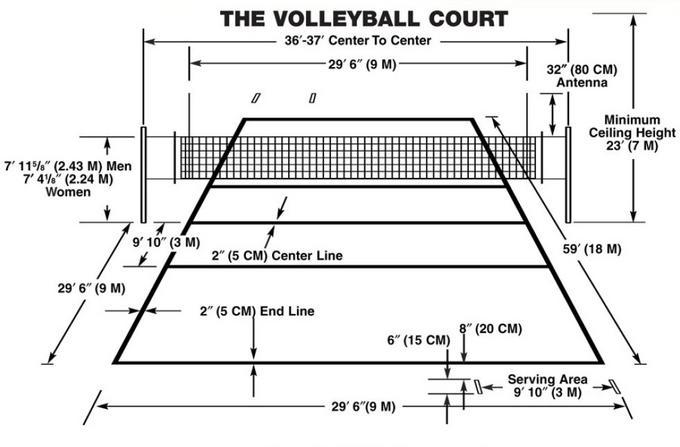 Volleyball Court Field