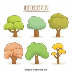 Drawn tree collection