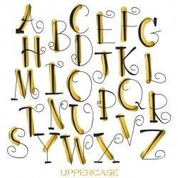 Elegant uppercase alphabet hand drawn vector