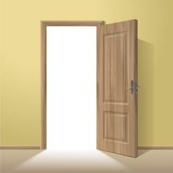 Exquisite wooden doors design vector 02