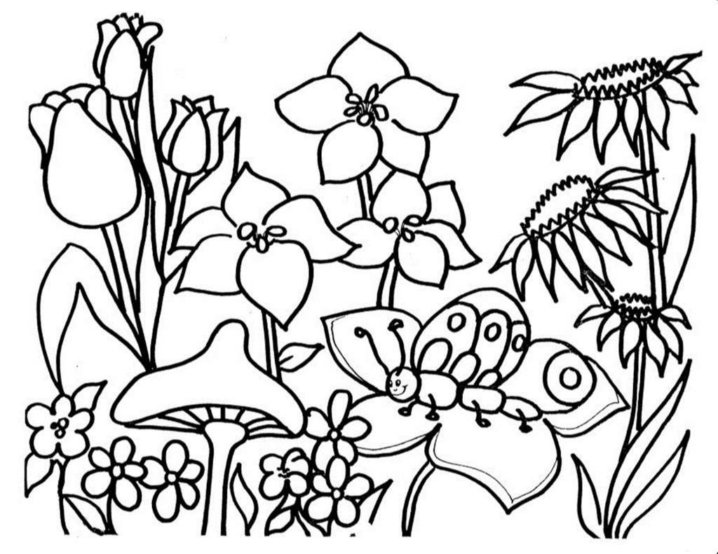 - Free Printable Flower Coloring Pages For Kids – Best Coloring