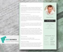 Freebie: Streamlined Word Resume – Mr Mint
