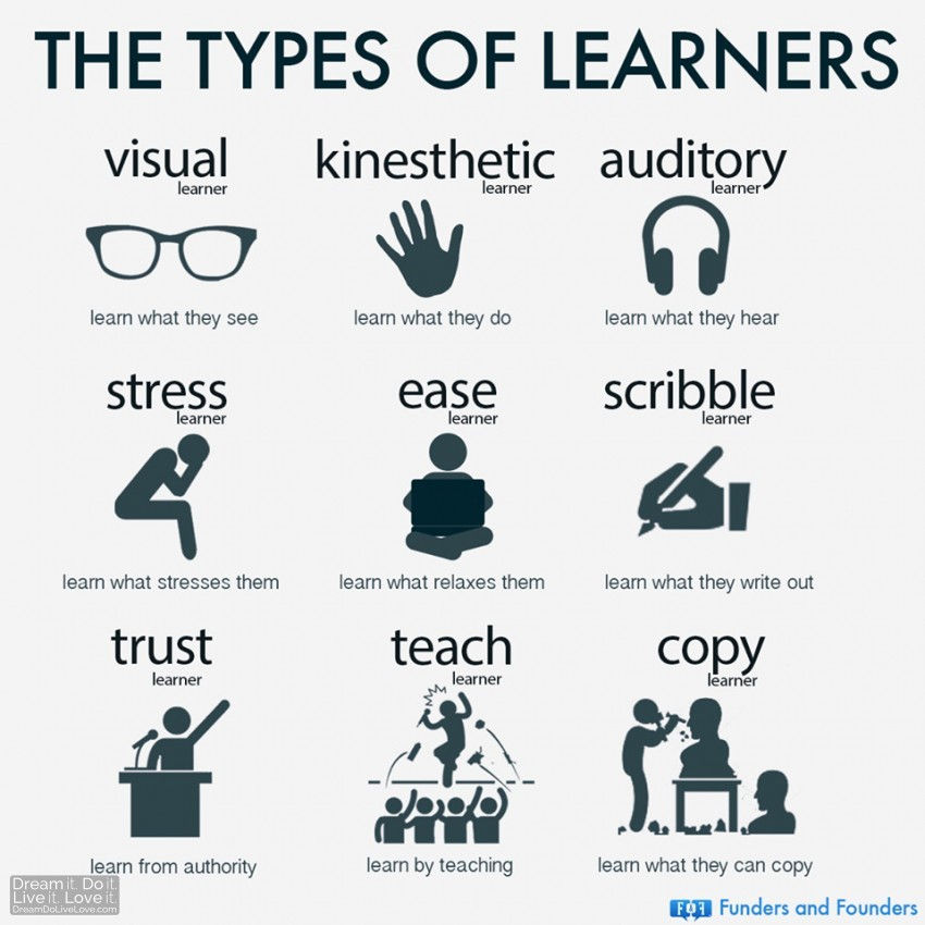 Infographic: The types of learners