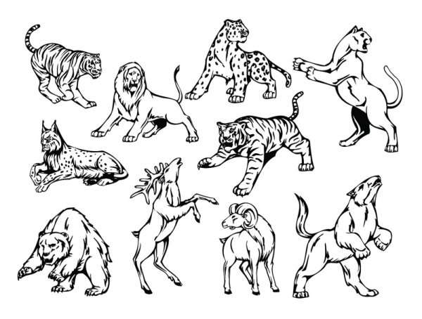 Line art animal pattern 01