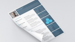 Material Style Free Resume | Seeker Link