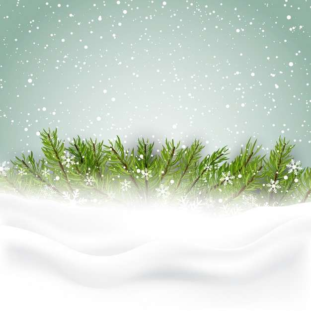 Nice background with pine leaves for christmas