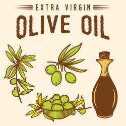 Olive oil background design Vector | Free Download