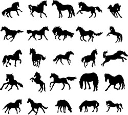 Running horse vector silhouettes 02