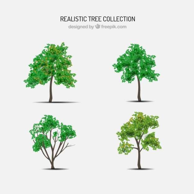 Set of trees in realistic style