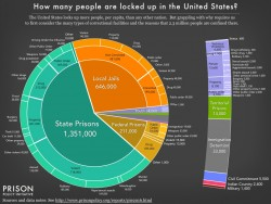 This Eye-Opening Prison Population Pie Chart Will Blow Your Mind | EverythingAboutDesign.com
