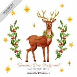 Watercolor background with pretty deer and mistletoe