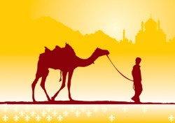 Boy and camel Vector