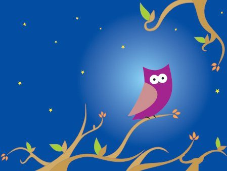 The night owl Vector