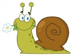 lovely cartoon snails vector 03