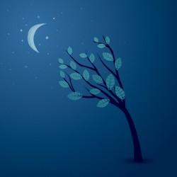 Midnight Conversation Vector