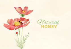 Watercolor Bee And Flowers Vector