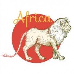 Africa lion vector