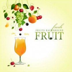 Creative fruit background vector graphic 03