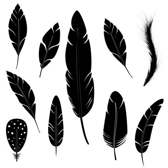 Feather silhouetter vectors set 02