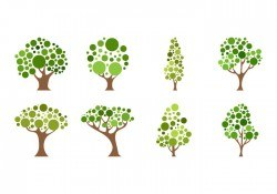 Free Cartoon Tree Icon Vector