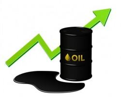 Oil growth vector