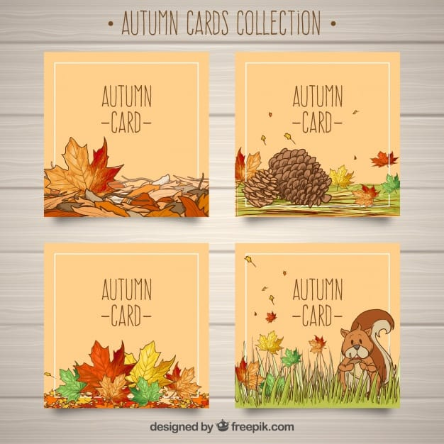 Lovely pack of hand drawn autumn cards