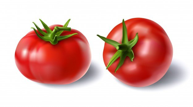 Vector illustration of a realistic style set of red fresh tomatoes with green stems