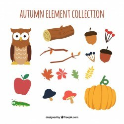 Autumn collection of colourful elements