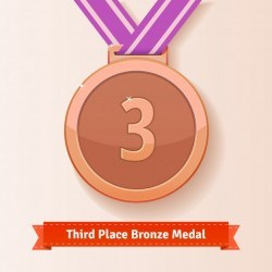 Third place award bronze medal with lilac ribbon
