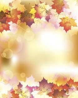 Autumn leaves with bokeh shiny background