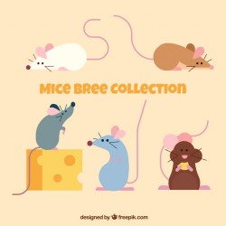 Set of flat mice breeds