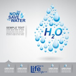 Start now save the water infographic vector 12