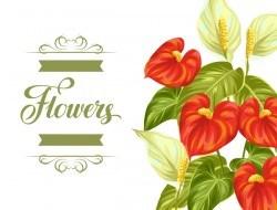 Festvial flower greeting card vector template 02