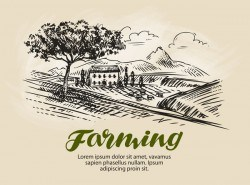 Farming hand drawing background vectors 05