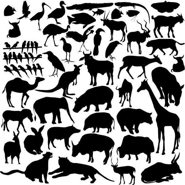 Wild animal silhouette set vector 01