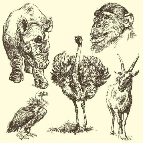 Hand drawing wild animal vector set 07
