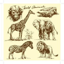 Hand drawing wild animal vector set 01