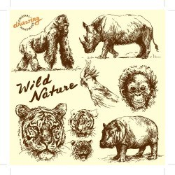 Hand drawing wild animal vector set 02