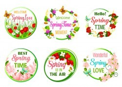 Spring flower round card vector