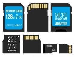 Micro memory card vector set