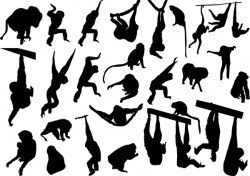 animal monkey silhouette vector 02