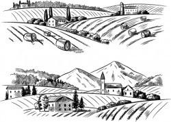 Sketch rural vector material