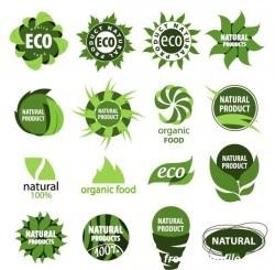 Abstract eco logos design vector